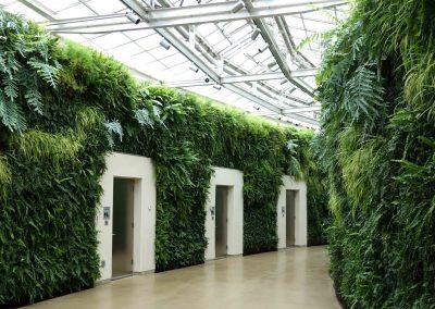 Green wall example